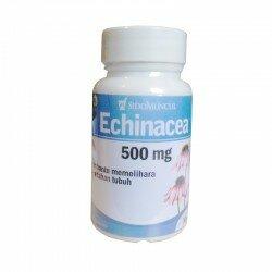 Echinacea SidoMuncul - Membantu mengatasi flu, radang tenggorokan, batuk, sinusitis, bronkitis, bengkak bernanah. Di jual murah