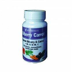 Billberry Carrot SidoMuncul - Bilberry Fructus, Membantu mata lelah, mencegah kekurangan vitamin A. Di jual lebih murah