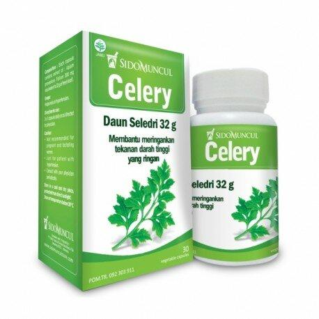 Celery SidoMuncul - Mengandung Apigenin,membantu menurunkan darah tinggi, hipertensi, kolesterol. Du jual harga murah